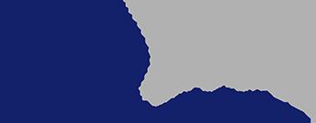 Newro Spine logo